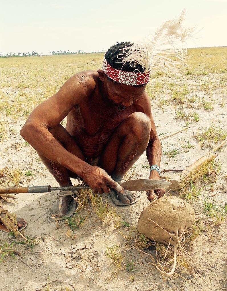 Bushmen of the Kalahari 4