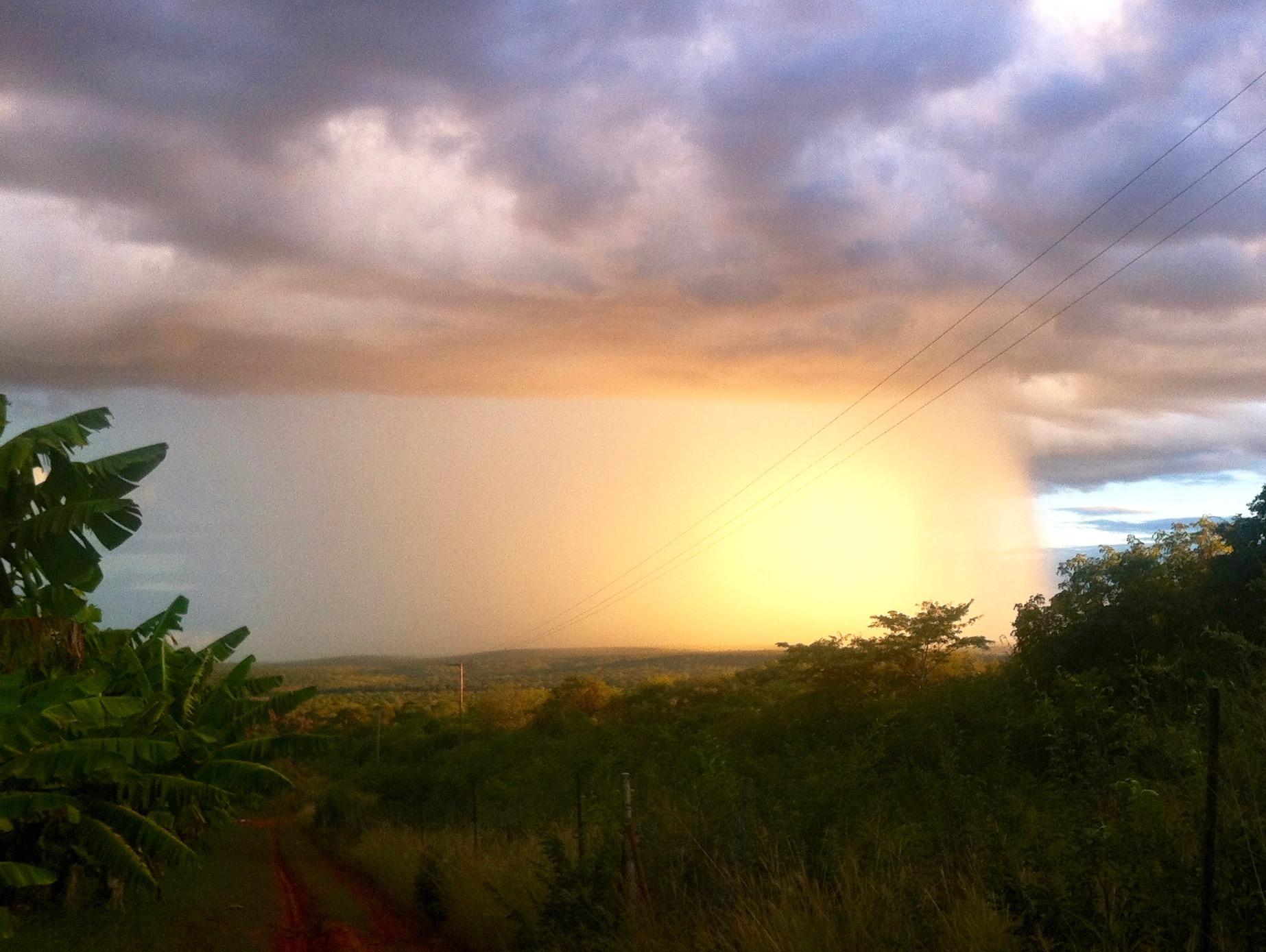 A sunlit rainstorm on the farm.
