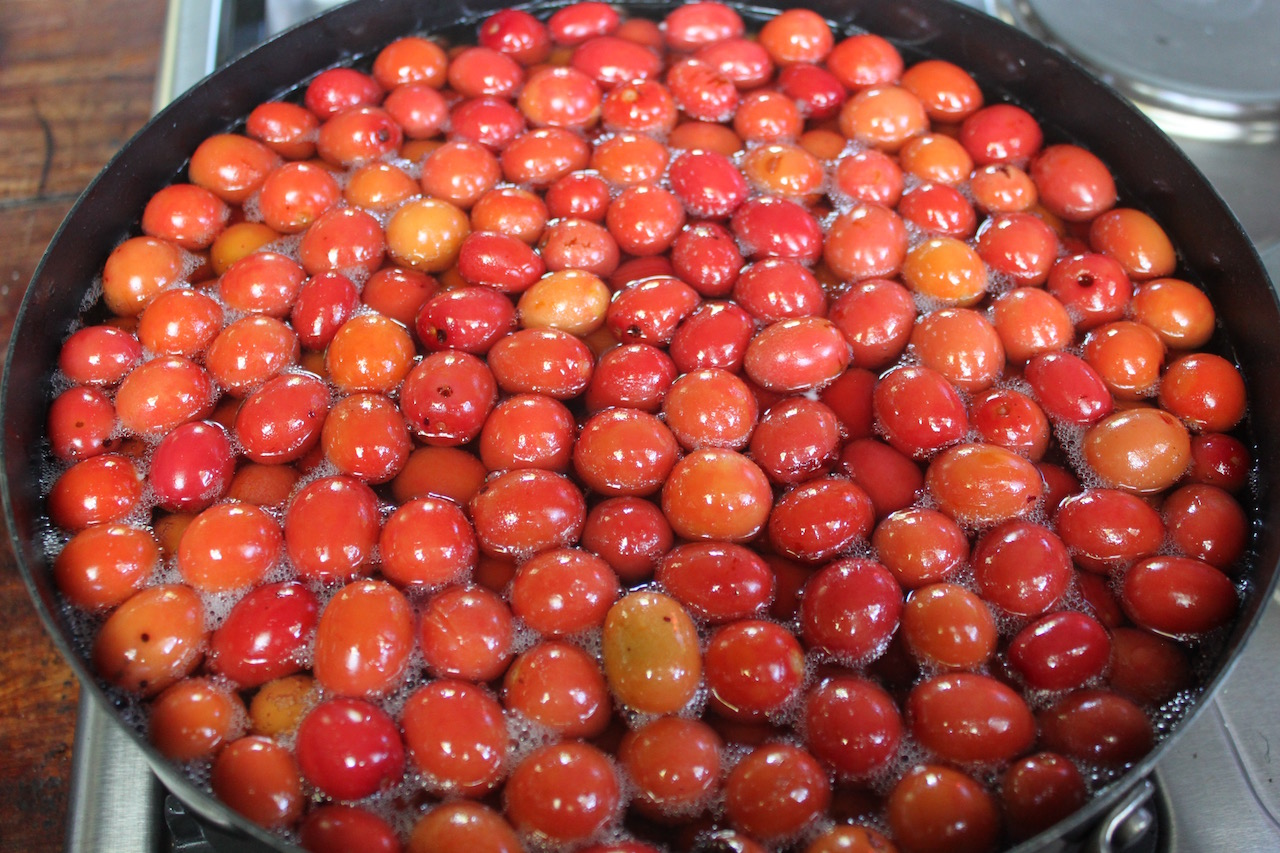 Starting the process of making mungomba syrup.