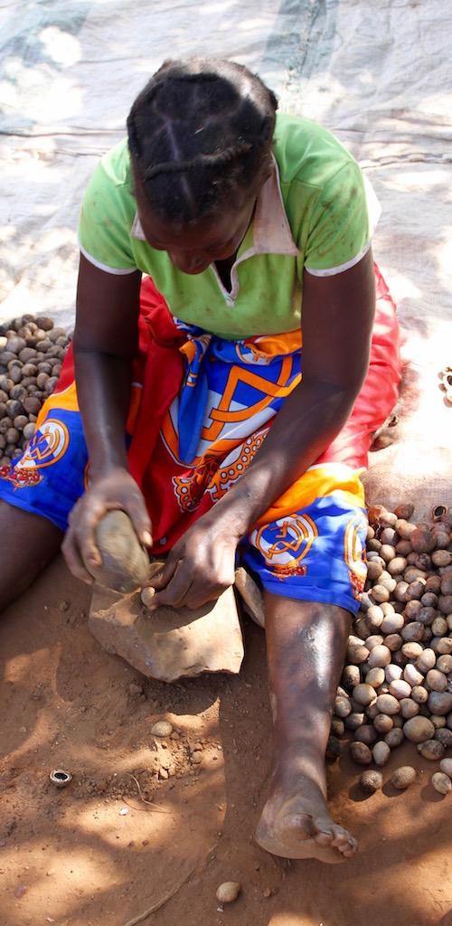 Mongongo nuts - Ruth Mongongo