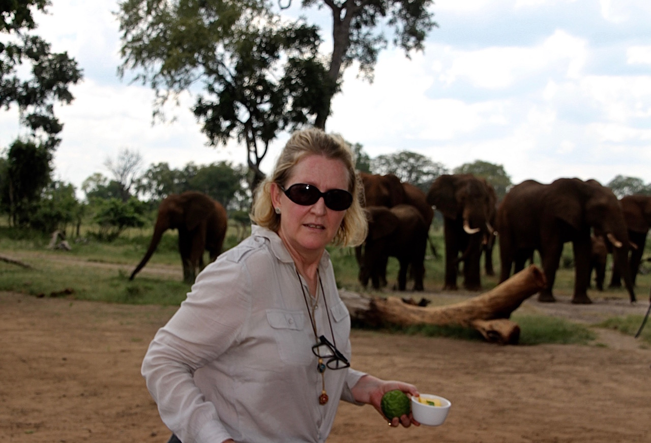 Preparing lunch while the elephants watched.