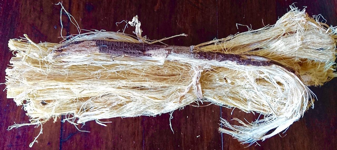 Munkoyo root.
